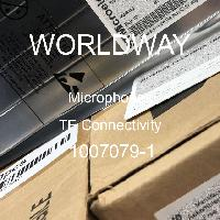 1007079-1